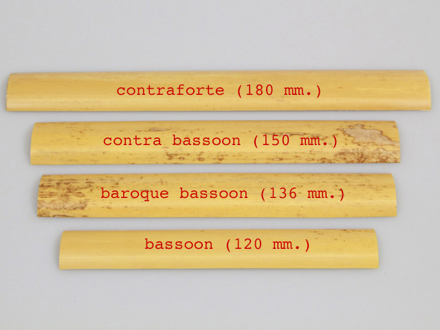 gouged cane for contraforte