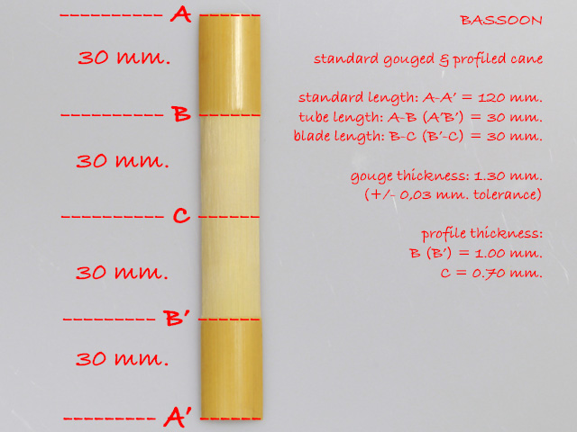 hardness-tested and profiled cane for bassoon